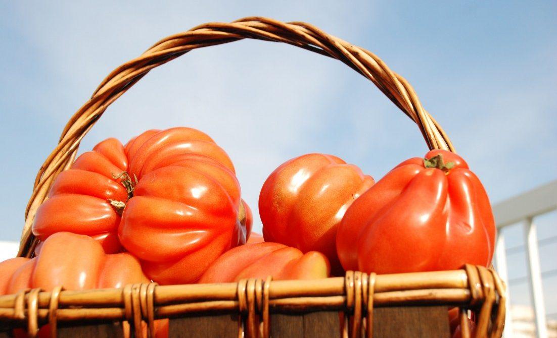 LucaDeli Farm Original Tomato