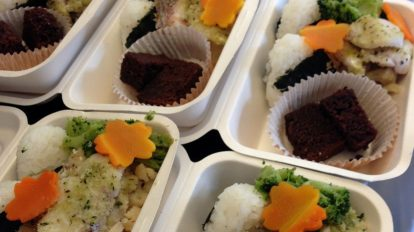 Onigiri and fish
